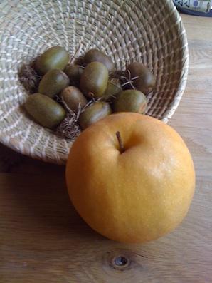 高知からの果物