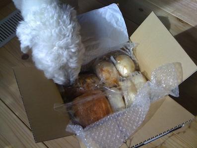 パンの贈り物2